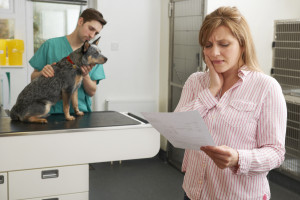lady looking at vet bill