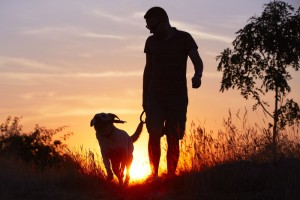 man walking dog in dark