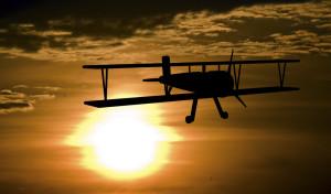 plane flying in sunset